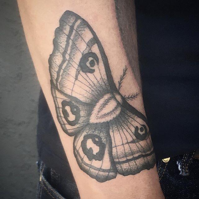 Moth tattoo by Jasmine Worth @jasmineworth To get tattooed by her please email JasmineWorthTattoos@gmail.com #darkart #darkartists #mothtattoo #insecttattoo #moth
